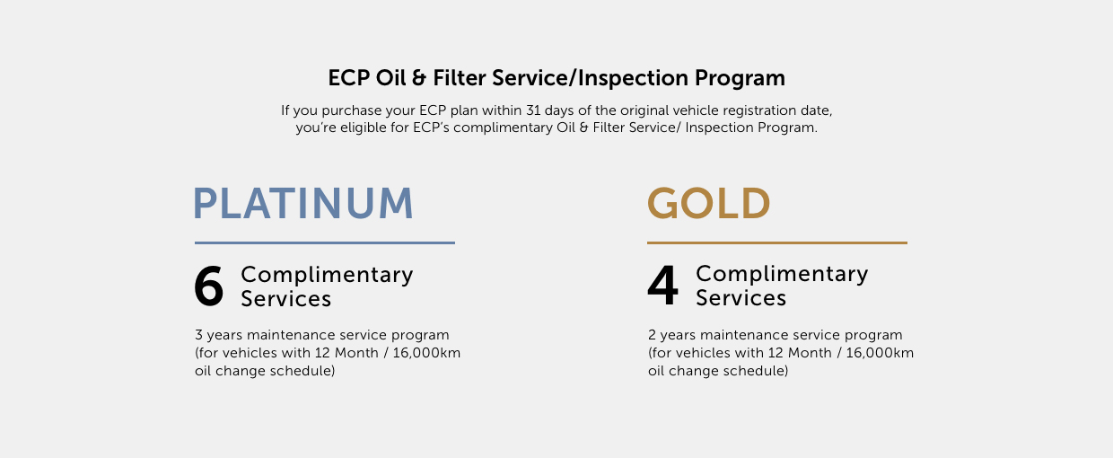 Oil And Filter Service.